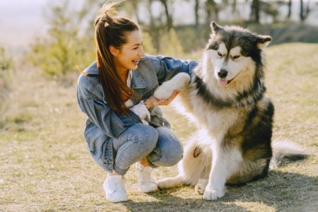 Why Do Dogs Put Their Paws On You? (12 Reasons)